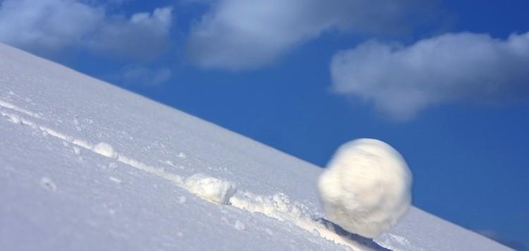 snowball-750x356.jpg