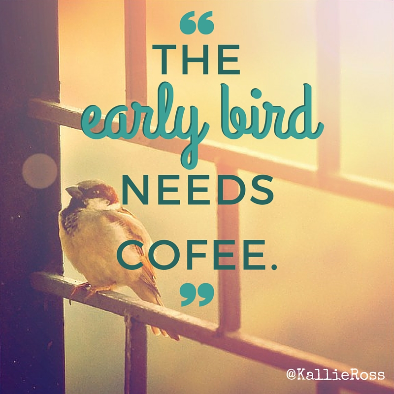The Early Bird…