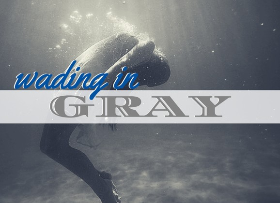 Wading in Gray
